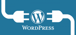 referencement naturel pour wordpress wissiyou